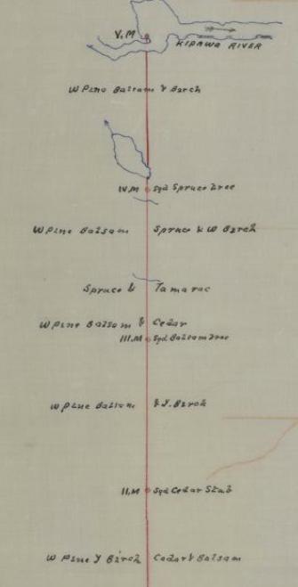 Inventaire forestier : région de la rivière Kipawa, Comté de Témiscamingue ; license no 35 . - 1890 - BANQ - Cote : P228,S1,P49